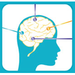 Feedback le apuesta al neuromarketing