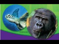 Sonrics y Animal Planet