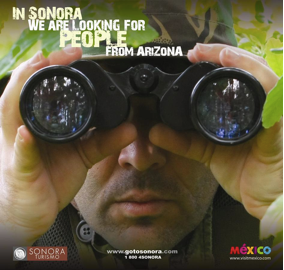 In Sonora We Are Looking For People From Arizona