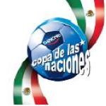 copa de naciones danone 2010