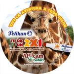 Pelikan y Africam 2X1