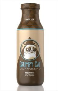 grumpy-cat-coffee-hed-2013