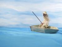 Las obras de Ernest Hemingway en videos de 15 segundos