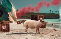 """El trailer de Angry Birds 2 nos muestra una visión más """"realista"""" de la guerra entre pájaros y cerdos"""