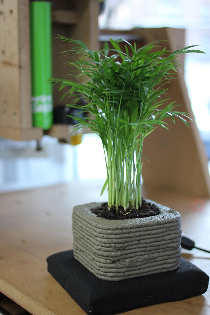 impresión de plantas 4