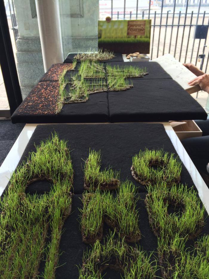 impresión de plantas 6