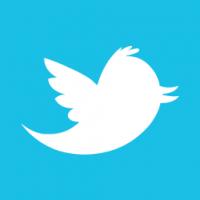 Web-Twitter-alt-2-Metro-icon