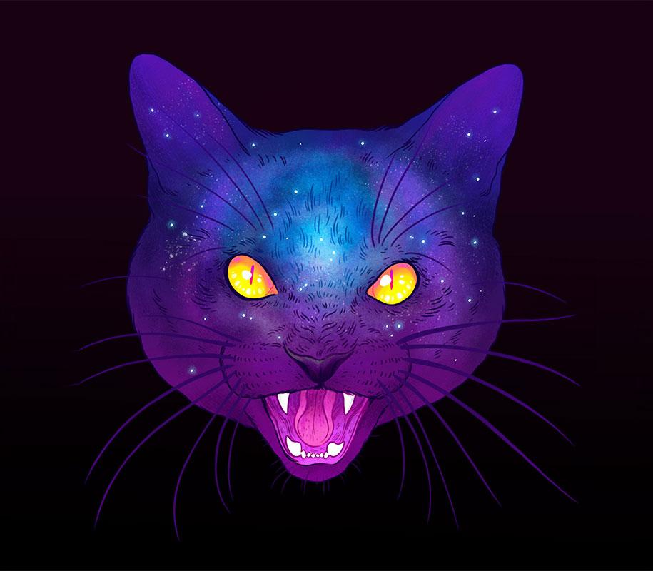 gatos4