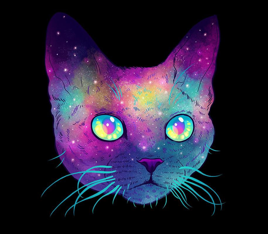 gatos7