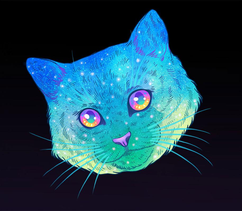 gatos9