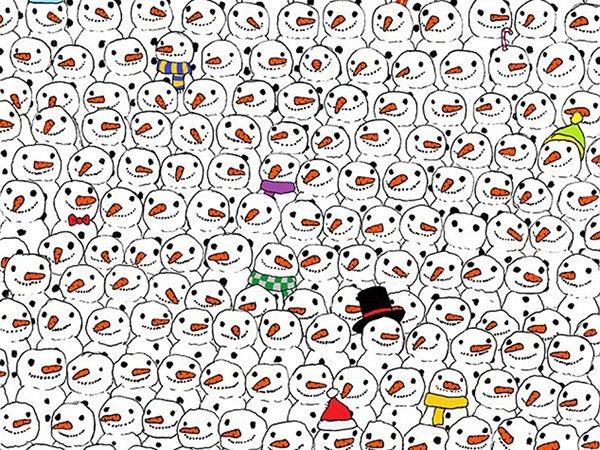 oso panda viral