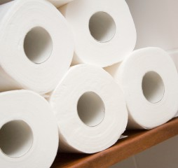 five rolls of white toilet paper in bathroom