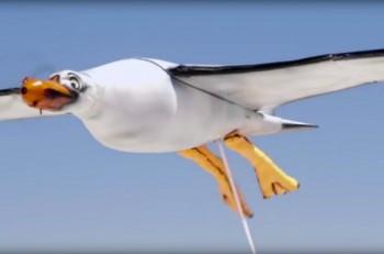 nivea dron gaviota
