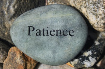Positive reinforcement word Patience engrained on a rock