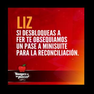 lizdesbloqueaafer_twitter_5