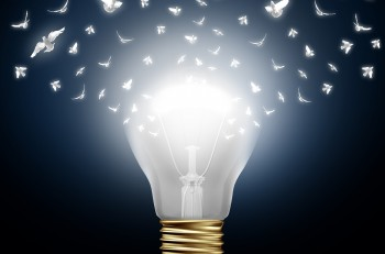 Creative start concept as a bright illuminated light bulb transforming to white flying birds as a digital messaging metaphor and social media creativity and distribution of innovative new ideas.