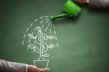 Watering can and money tree drawn on a blackboard concept for bu
