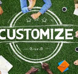 customize_
