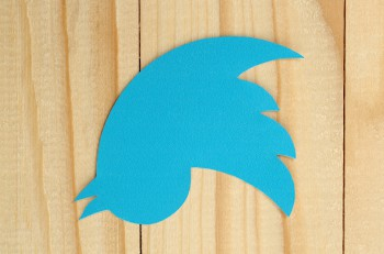KIEV UKRAINE - FEBRUARY 19 2015:Twitter logotype bird printed on paper. Twitter is an online social networking service that enables users to send and read short messages.