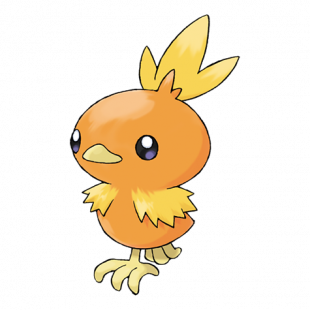 torchic_pokemon