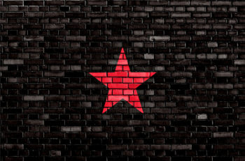 flag of EZLN painted on brick wall