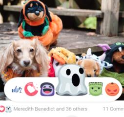 halloween_facebok