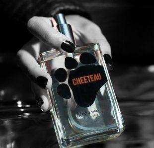 cheetos-perfume