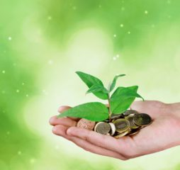 Money bank fund investment growing investor green