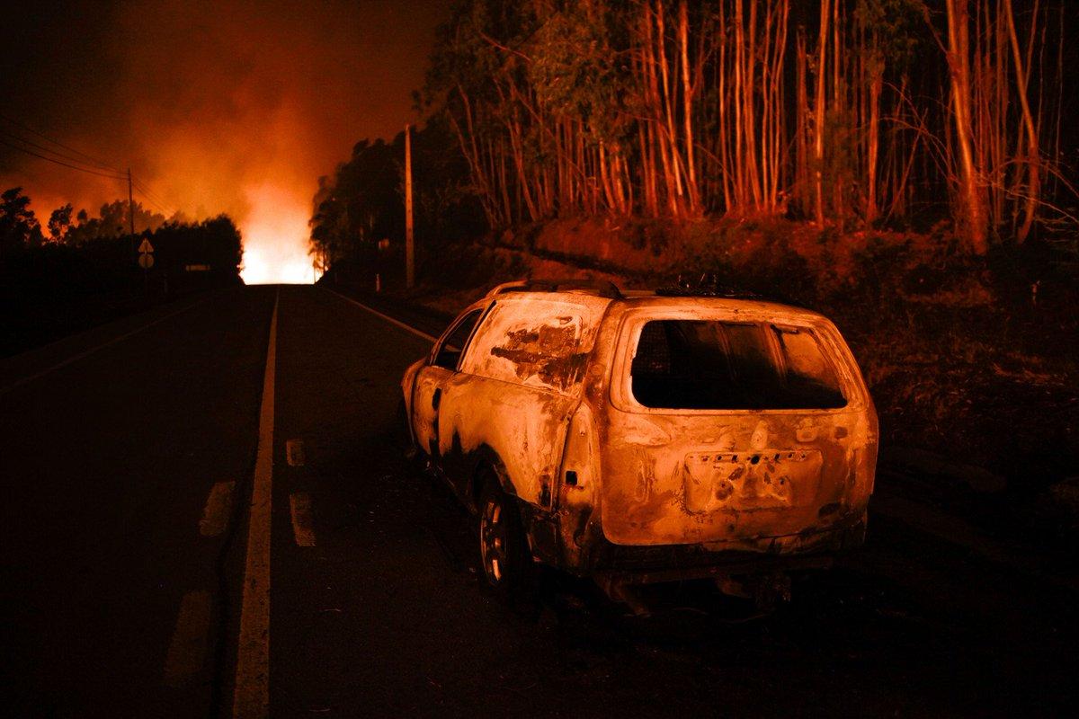 Tragedia en Portugal. Mueren 61 por incendios forestales