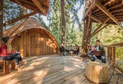Microsoft casa de árbol