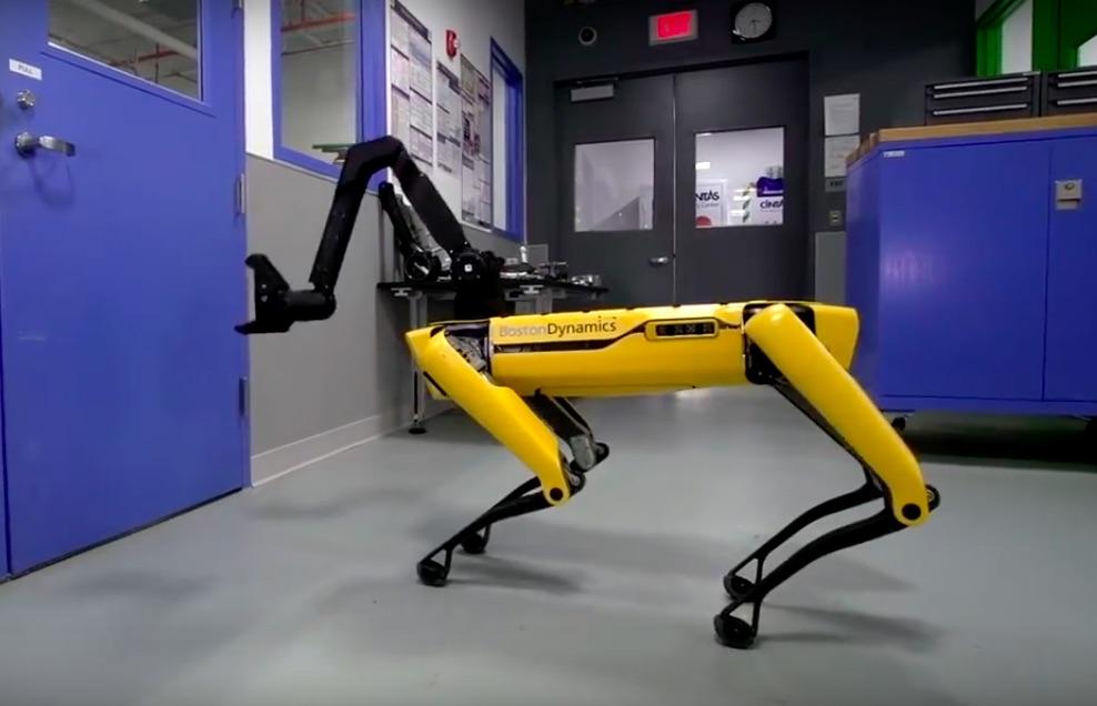 video_viral_perro_robot_youtube