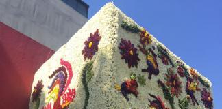 Masaryk, marcas, festival, flores