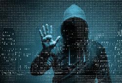 Los hacker atacaron desde cuentas gubernamentales hsta correos de Gmail y cuentas de Netflix