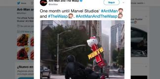 Ant-Man and The Wasp-Marvel-Kitty