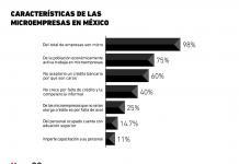 Radiografía de las microempresas en México