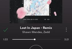 Shawn Mendes-Lost In Japan Remix