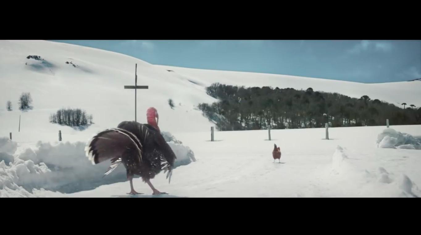 kfc-pavo-pollo