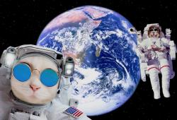 Shutterstock-Moon Landing-Exposed