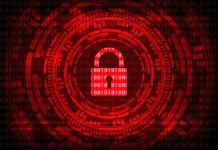 Tips para garantizar la seguridad de los datos de tu empresa