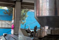 Maseca-Tortilla-harina-de-maíz-tortillería-Bigstock