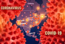¿Es similar el comportamiento de los consumidores mexicanos al de otros países con respecto al coronavirus?