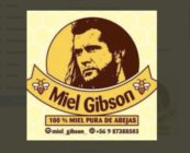Miel Gibson