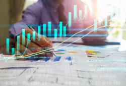 Analista de marketing digital - desarrollo de mercado