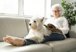 Mujer jubilada