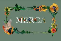 Merca2.0 El Palacio de Hierro