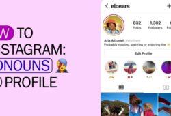Instagram-pronombres