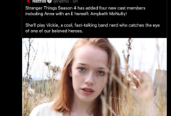 Stranger-Things-Netflix-Ann-With