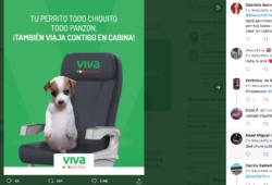 Perrito Panzón, nueva imagen de campaña para Viva Aerobus