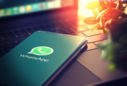 whatsapp sección amarilla