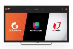 univisión youtube tv